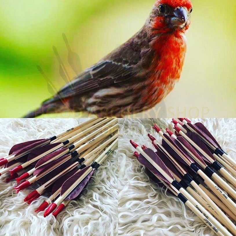 Resim Medieval Traditional Archery Arrow For Recurve Longbow Hunting Archery Bow Shoot with Brown Turkey Feather