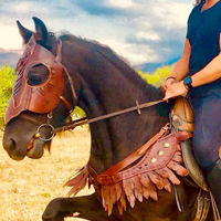 Picture of Horse Breast Collar Breastplate Horse Armor