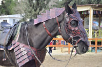 Dwarf Horse Collar Armor Costume Horse breastplate bridle headstall collar warrior horse tack wither strap barrel. ürün görseli